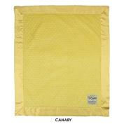My Blankee Minky Dot Velour with Flat Satin Border Stroller Blanket 80cm x 90cm