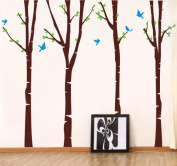 Pop Decors Removable Vinyl Art Wall Decals Mural for Nursery Room, Birch Trees