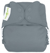 BumGenius Freetime All-In-One Cloth Nappy - Snap - Armadillo