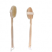 Homgaty Bristle Body Brush Massager Bath Shower Back Spa Scrubber Long Wooden Handle