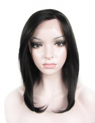 Medium Length Natural Ombre Brown and Black Colour Synthetic Hair Silky Straight Lace Front Wig 2#