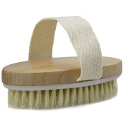 """Touch Me"" Dry Skin Body Brush - Natural Bristle - Remove Dead Skin And Toxins, Cellulite Treatment ,Exfoliates, Stimulates Blood Circulation, Promote Healthy Glowing Skin"