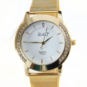 Orangesky Women Luxury Watch, Crystal Golden Stainless Steel Analogue Quartz Wrist Watch