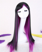 Superwigy® Fashion Ombre Straight Wig Two Tone Black and Purple Natural Heat Resistant Hair Wowen Wigs/new