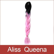 Aliss Queena(TM)4pcs/Lot 24inch100grams/pack Black & Pink Ombre Two Tone Coloured 100% Kanekalon Jumbo Box Braiding Hair