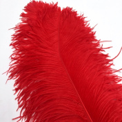 Sowder Red Ostrich Feathers 18-20inch(45-50cm) for Home Wedding Decoration Pack of 10pcs