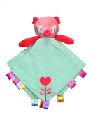 Taggies Rattle Head Owl Baby Girl Plush Security Blanket Lovie by Taggies - Green - Not Applicable