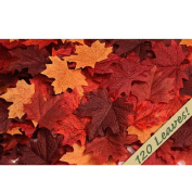 120 Artificial Fall Maple Leaves in a Mixture of Autumn Colours for Weddings, Events and Decorating
