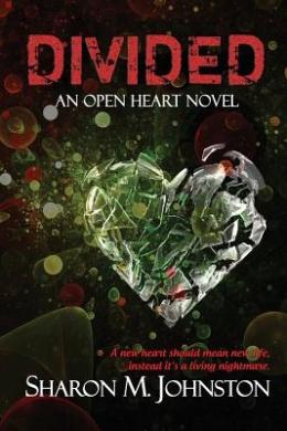 Divided (Open Heart Novel)