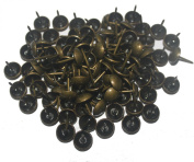 Microtimes Round Large-headed Upholstery Nails/tacks 1.1cm Natural French Nail Tacks Antique Brass 100pcs