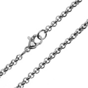 "Beadaholique Rolo Chain Finished Necklace, 18"", 1 Necklace 3mm Links, Stainless Steel"