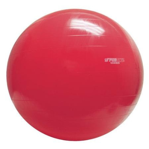 Gymnic-Inflatable-Exercise-Ball-Free-Shipping