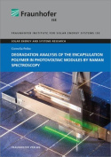 Degradation Analysis of the Encapsulation Polymer in Photovoltaic Modules by Raman Spectroscopy