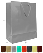 Novel Box® Silver Matte Laminated Euro Tote Paper Gift Bag Bundle 8X4X10 (10 Count) + Custom NB Pouch
