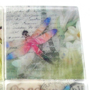 Paris in springtime Butterfly French Postcard Soap, Try one, The Salt Baron Soap