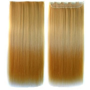 Awbin 60cm Yellow to Orange Colour Ombre Straight Full Head Clip in Hair Extension
