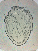 Flexible Resin or Chocolate Mould Anatomical Heart