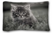 Custom Cotton & Polyester Soft ( Animals kitty fluffys face grass hide black and white ) Pillow Cushion Case Cover One Sides Printed 50cm x 80cm suitable for X-Long Twin-bed PC-Purple-33054