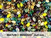 10gr Czech Two Hole Seed Beads MiniDuo 2x4 mm Purple Mix