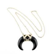 2 PCS Fashion Jewellery Necklace Long Chain Pendent Sweater Collar Bib Choker Collier Black Horn Half Moon