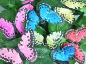 Butterfly Clips Floral Wedding Decorations Assorted Bright Colours 8.9cm Wingspan Set of 12