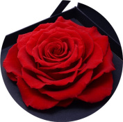 Never Withered Roses, Upscale Immortal Flowers, Fresh Roses, Flowers, Gift Boxes, Gift Ideas 13cm *13cm *9.9cm