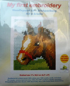 Pony Tapestry Kit