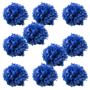 WYZworks Set of 10 - ROYAL BLUE 41cm - (10 Pack) Tissue Pom Poms Flower Party Decorations for Weddings, Birthday, Bridal, Baby Showers, Nursery, Décor