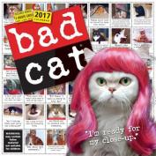 Bad Cat Wall Calendar 2017