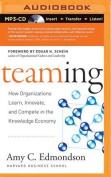 Teaming [Audio]