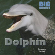 Dolphin (Big Beasts)