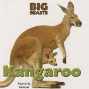 Kangaroo (Big Beasts)