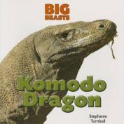 Komodo Dragon (Big Beasts)