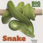 Snake (Big Beasts)