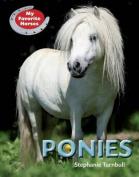 Ponies (My Favorite Horses)