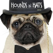 Hounds in Hats 2017