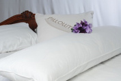 Pillowtex ® White Goose Feather and Down Body Pillows 50cm x 150cm
