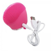 Denshine Electric Soft Silicone Brush USB Recharging Super Vibration Face Washing Massager Facial Cleanser Machine
