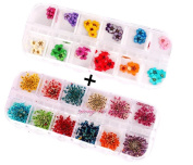 XICHEN® 60 Starry plus 60 five flower flower three-dimensional applique 3d nail stickers nail supplies dried flowers2* 12 colour