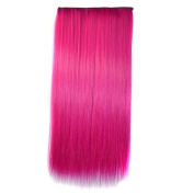 Colorlife 24 Inch/ 60cm Rosy Pink Colour Straight Synthetic Full Head Hair Extension with 5 Clips