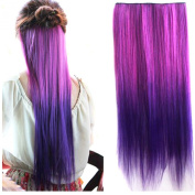 Colorlife 22 Inch/ 55cm Rose Red to Dark Purple Ombre Colour Straight Synthetic Hair Extension with 5 Clips