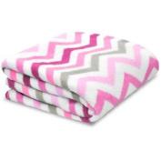 Little Starter Toddler Blanket, Pink Stripe, Super Soft and Lightweight, Machine Washable
