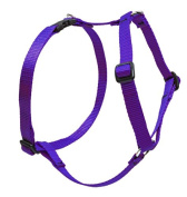 Lupine Roman Harness for Large Dogs, 2.5cm / 60cm - 100cm , Purple
