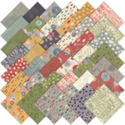 Mon Ami by Basic Grey Quilt Fabric Charm Pack 40 13cm Squares