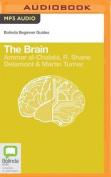 The Brain  [Audio]