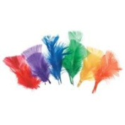 Darice All Purpose Feathers - Assorted Bright Colour - 14 grammes
