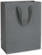 "Solid Euro-Shoppers - Empire State Grey Manhattan Eco Euro-Shoppers, 10x 5"" x 33cm (100 Bags) - BOWS-5843-0609"
