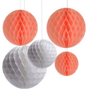 AllHeartDesires Pack of 6 Mixed Peach White Decorative Paper Flower Honeycomb Ball Birthday Outdoor Wedding Party Hanging Decoration