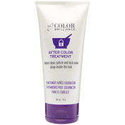 Ion Colour Brilliance After Colour Treatment 210ml