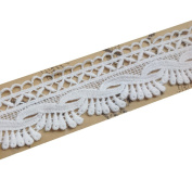 Cotton Embroidered Lace Trims Eyelet Fabric Sewing Supply 3.5 CM Wide Pack of 14 Yards
